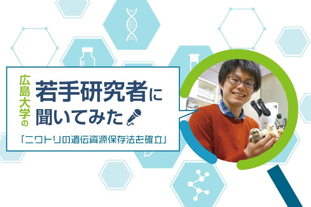 研究者_ニワトリ